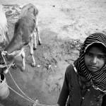 Dziewczynka z kozami