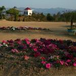 Kakching Garden