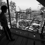 Pukpui, Duata oglada swoj dom w budowie