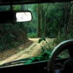 W drodze do Phury
