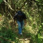 Okolice Khaikhy, przedzieramy sie przez las