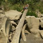 Chhura / Saphao stones, Ruala pozuje