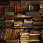Lorraine Ville, biblioteczka